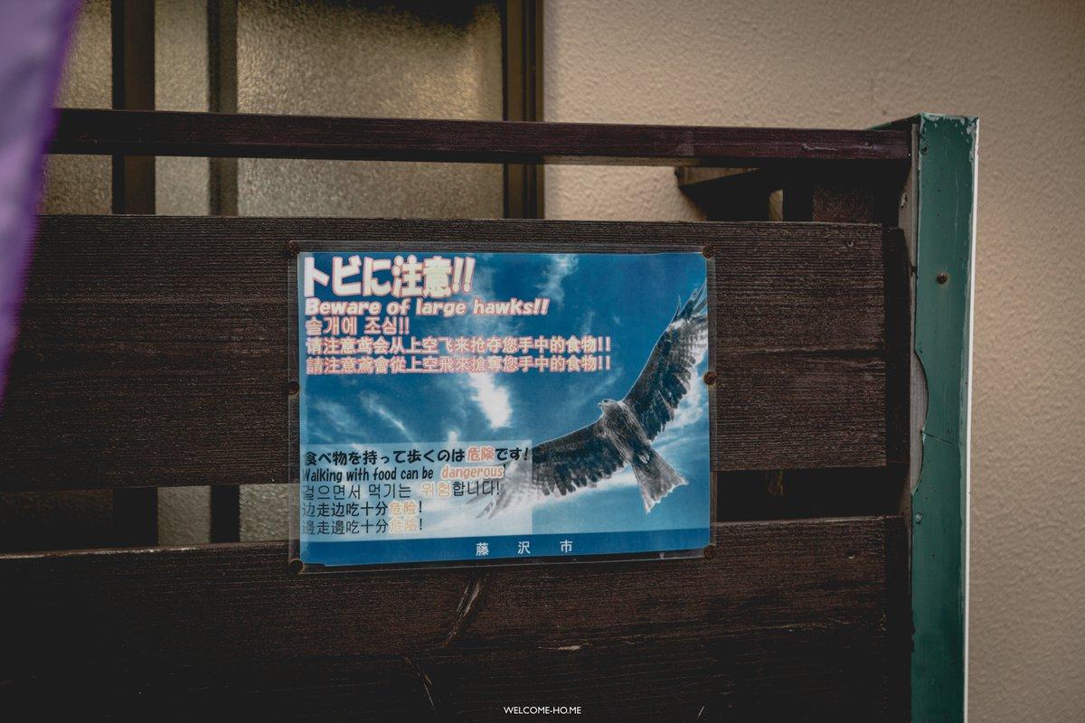 enoshima model course